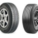 Goodyear Integrity vs Michelin Defender